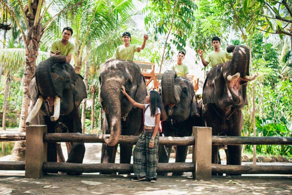 Lombok Elephant Park 1
