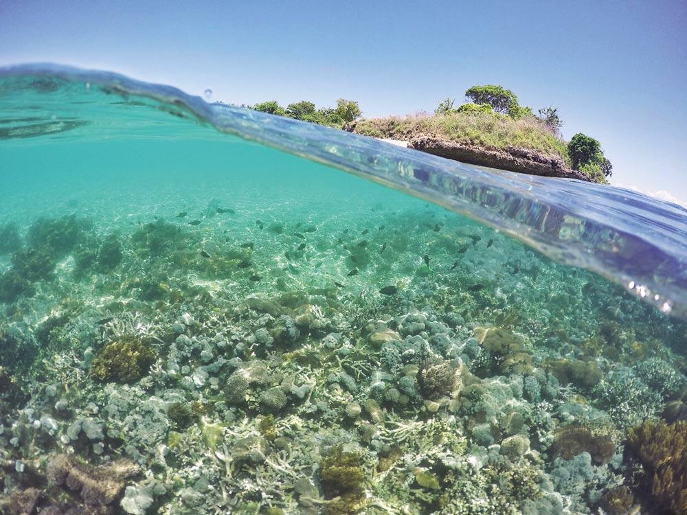 Pulau Sophialouisa (Gili Sepatang) Lombok
